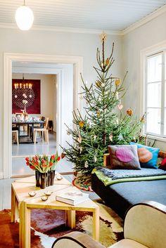 Pikkupöydät ovat syntyneet yhteistyössä sveitsiläisen Werner Blaserin kanssa. Sohva on Petrin tekemä ja tyynyt Tiina Tuunasen. Kuusen lumitähtikoristeet ovat ystävän Erikeeper-liimasta taituroimat. Lapset ovat koristelleet kuusen äidin kanssa itse leipomillaan pipareilla.