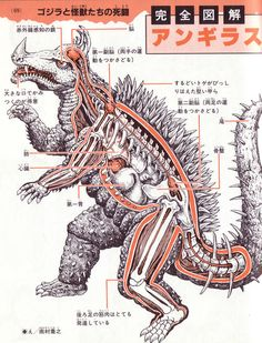 The anatomy of Anguirus.  Courtesy, presumably, of Toho's awesome psuedoscience department.