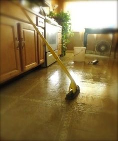 lists things to add to water/vinegar when mopping for shine etc.