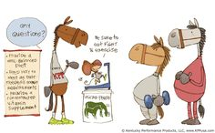 Weight loss for horses