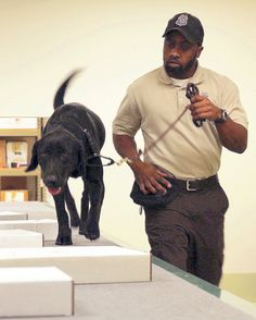 Wildlife Inspector Amir Lawal and wildlife-sniffing dog Viper.