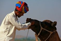L'homme et son dromadaire, Pushkar, Inde, India, Rajasthan (Philippe Guy)