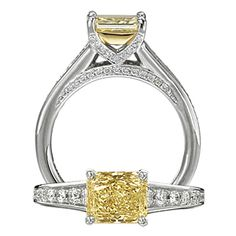 OMG. This Has Got To Be The Most Perfect Ring Ever. Yes Please.