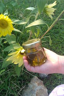 How to make comfrey infused oil...