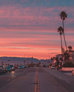 Pink sky and palm trees all over Los Angeles, California. Sky Aesthetic, Summer Aesthetic, Aesthetic Photo, Aesthetic Pictures, Retro Aesthetic, Photo Wall Collage, Picture Wall, Pretty Sky, Pink Sky