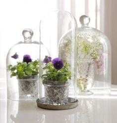 Stolp met viooltjes