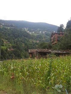 Uzungol, Trabzon....