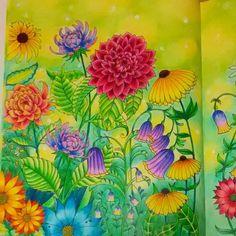 アイビーは目をみはりました。現れたのは巨大な花園だったのです。雛菊は傘のように大きく、ブルーベルはすっぽり入れるほどでした。 アイビーはダリアの森を抜け、巨大な紫陽花の花を通って、蝶の残したインクのあとをたどっていくのでした🌸 #コロリアージュ…