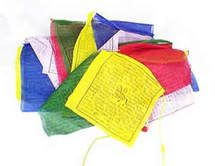 Windhorse Prayer Flags http://www.dharmashop.com/products/Peace-Prayer-Flags.html 25 for $17