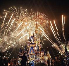 Disney Park Pictures ~M Disney World Florida, Disney World Vacation, Disney Vacations, Disney Trips, Walt Disney World, Disney Love, Disney Magic, Disney Art, Florida Pictures