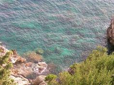 Serenity !  Carbonara recipe....just like in the greek islands!
