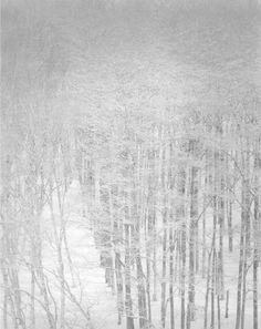 firsttimeuser:    Sans titre, série Snow Land, 2010 © Byung-Hun Min