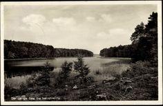 Ansichtskarte / Postkarte Neustrelitz Mecklenburg Vorpommern, Der Lange See