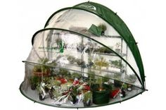 Grow your Own with our Horti Hood 90 Folding Greenhouse. HortiHood 90 wall-mounted greenhouse, PVC greenhouse with quick and easy lift-up, drop down access. Buy Greenhouse, Greenhouse Wedding, Greenhouse Ideas, Portable Greenhouse, Geodesic Dome Greenhouse, Homemade Greenhouse, Greenhouse Gardening, Flower Gardening, Organic Gardening