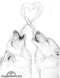 Wolf love wow, whoever the artist is this is really good ! Wolf love wow, whoever the artist is thi Love Drawings, Art Drawings Sketches, Animal Drawings, Drawings Of Wolves, Painting & Drawing, Drawing Eyes, Wolf Drawing Easy, Wolf Howling Drawing, Pig Drawing