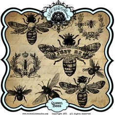 Vintage Queen Bees Collage Sheet Clipart By Withwildabandon 495