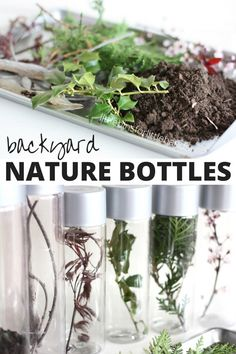 Backyard nature discovery bottles or sensory bottles for kids to make as specimen bottles for Spring science and sensory play. Explore the outdoors and for a fun Spring activity to check out growing plants and budding trees. Science Crafts, Science Activities For Kids, Nature Activities, Preschool Science, Spring Activities, Stem Activities, Outdoor Activities, Outdoor Crafts, Preschool Themes