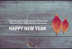 Happy New Year 2019 Wishes Short New Year Wishes Messages Short New Year Wishes, Happy New Year Status, New Year Wishes Images, New Year Wishes Messages, Happy New Year Pictures, Happy New Year Quotes, Happy New Year Cards, Happy New Year Wishes, Happy New Year Greetings