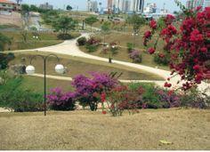 Campolin Park, city of Sorocaba (SP); foto: Ana Cecília Campos 2007 - QUAPASEL resarch