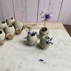 Planters, Diy holiday decor, Cement diy, Diy concrete planters, Diy planters, Concrete - These cute little cement egg planters are easy to make The perfect decorative table decor accent for Easter T - #Planters