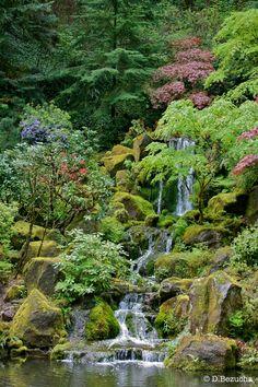 steep waterfall hillside japanese garden - Google Search