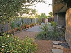 A dining patio w. heat-absorbing, exposed-aggregate concrete; decomposed granite and Mexican beach pebbles; planting beds defined by steel edging; heat-and drought-tolerant palo blanco trees and coral plant; steel planters made from leftover pipe Photo by: Steve Gunther. Garden Design Calimesa, CA