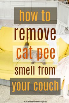 How exactly to reset your house & begin a cleaning routine. Having a tidy house saves my sanity as a stay at home mom. Listed here are my tips to reset your home back to square one and begin a cleaningschedule to help keep it that way. Remove Cat Urine Smell, Cat Pee Smell, Cat Urine Smells, Remove Stains, Pee Stains, House Cleaning Tips, Diy Cleaning Products, Cleaning Hacks, Household Products