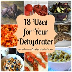 18 Uses for Your Dehydrator | Soundness of Body & Mind