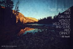 Nature quote. Quotes to live by.