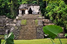 Temple of the Skull  in Palenque, Chiapas, Mexico