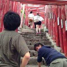 「大人の階段」のーぼるー! #30jidori #30doga #jvuymg @ 元乃隅稲成神社 instagram.com/p/aU-SIglAjE/
