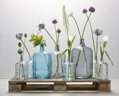Vazen, decoratie, bloemen, vases, decoration, flowers, Kwantum