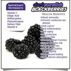 What are blackberries good for? Learn the fruit facts and health benefits of blackberries as well as choosing, buying and storing tips. Benefits Of Berries, Fruit Benefits, Blackberry Health Benefits, Vegetable Benefits, Fruit Facts, Food Facts, Healthy Tips, Healthy Recipes, Healthy Foods