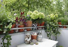 Auf der Balustrade eines Balkons stehen viele Pflanzengefäße mit unterschiedlichen Grünpflanzen.