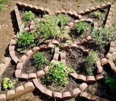 Knotwork herb garden from curved border blocks!  ... just a picture -- no info