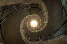 Double Helix by Martin Widlund