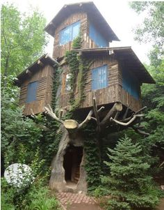 Tree House . Marin, California:  If I ever get to the left coast ....