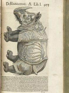 Conradi Gesneri medici Tigurini Historiae animalium.  This is Albrecht Durer famous Rhino. As I understand it drawn from written and verbal descriptions but not not from observation.