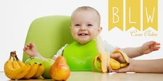 Curso online Baby Led Weaning – Mami Natura