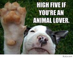 High five anyone ??