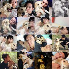 Happy Birthday to Simba. Lee Jung Shin's dog ❤