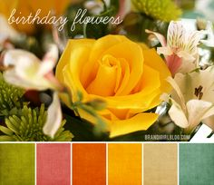 http://www.ornamentalstyle.com/blog/wp-content/uploads/2012/04/cpbw-3-palette-birthday-flowers-copy.png   Color scheme?