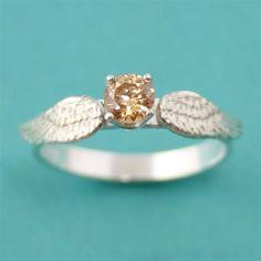 El anillo *.*