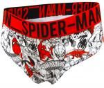Marvel Comics Amazing Spiderman Hipster Panty for women