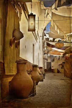 Seville ~ Spain