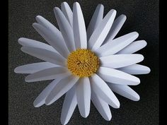 How to make Amanda Giant Paper Flower (free templates available for download on Anyone Can Craft Facebook page and website)