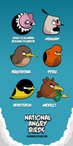 latin angry birds