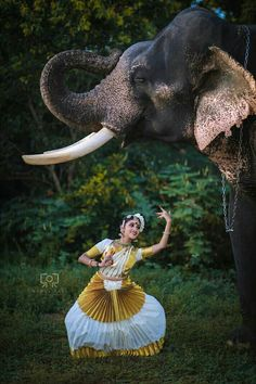 Elephant Photography, Dance Photography, Dance Paintings, Nature Paintings, Folk Dance, Dance Art, Resident Evil Girl, Kerala Travel, Bollywood