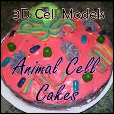 models are a fun, easy way to learn about plant and animal cells. Here you'll find step-by-step instructions for baking an awesome, scientifically accurate animal cell cake, as well as a variety of animal cell cake pictures to inspire you Science Cells, Science Fair, Science Lessons, Teaching Science, Science Activities, Science Projects, Life Science, School Projects, Science Week