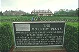 The Morrow Plots -- a piece of history right in Illinois!